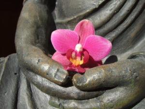 בודהה מחזיק פרח לוטוס